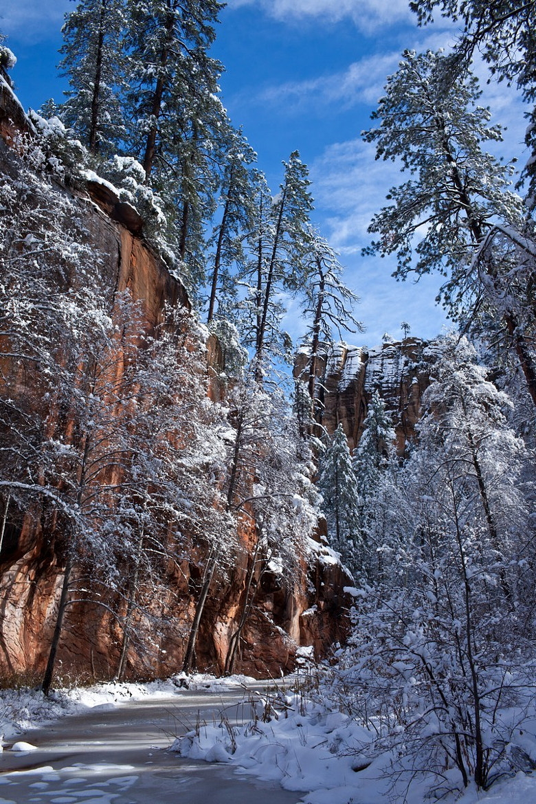 Photograph West Fork under Snow by Norm Cooper on 500px