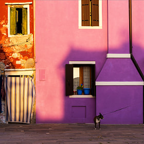Late evening in Burano by Bogdan D Photographer