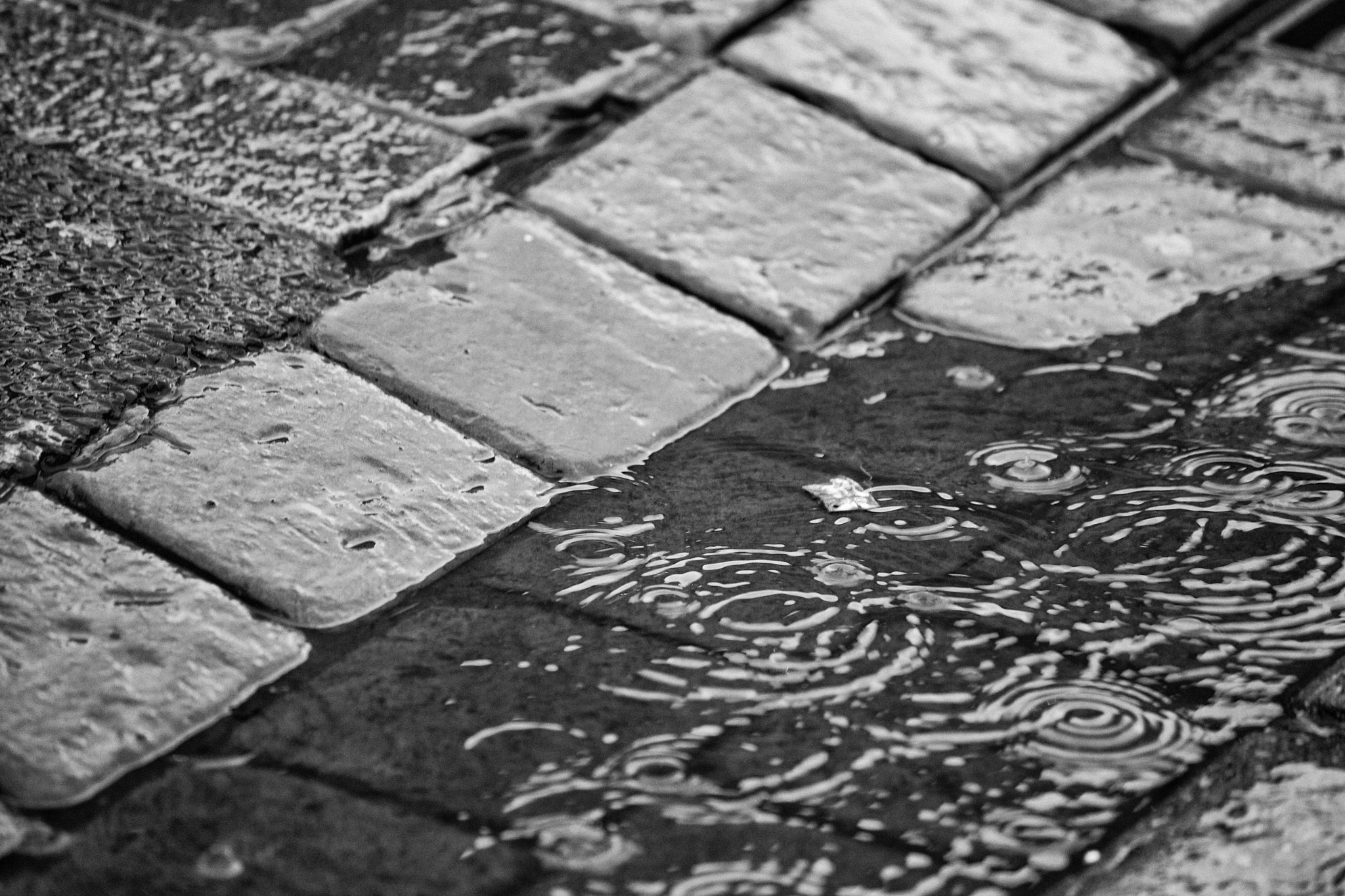 Photograph Wet Flag Stones by David Thurston on 500px