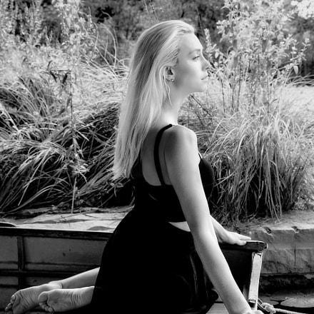 Black Shadows & White Roses