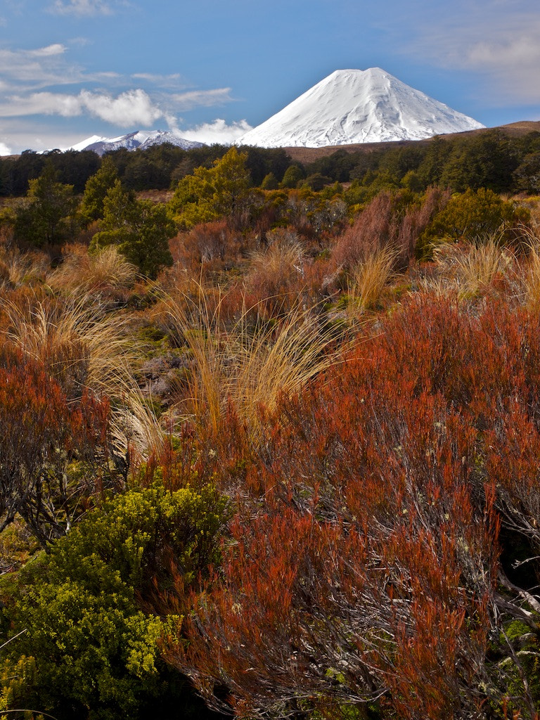 Photograph Tongariro National Park III by Christoph Rupprecht on 500px