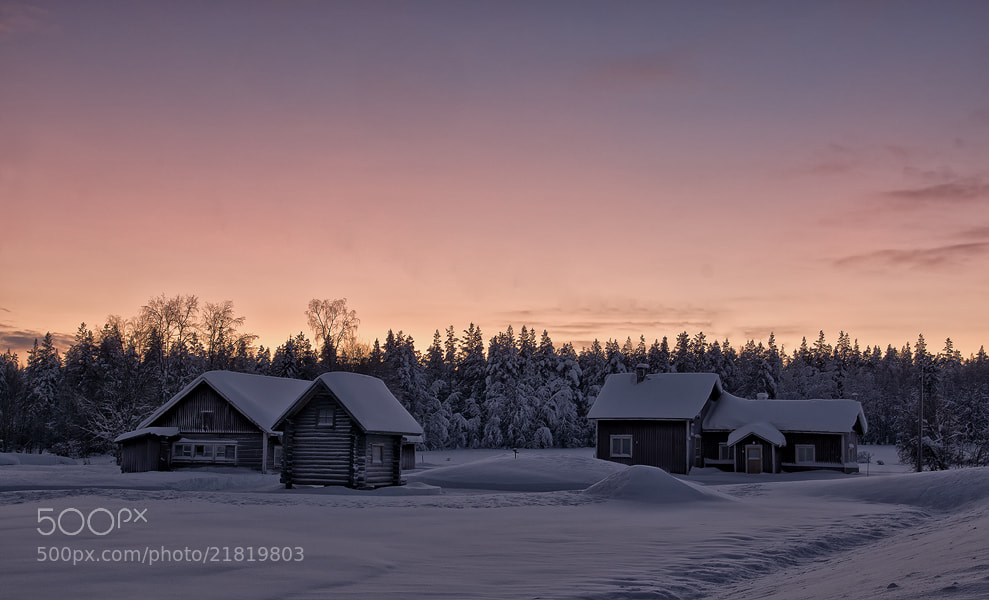 Photograph winter in lappland by Sandra Löber on 500px
