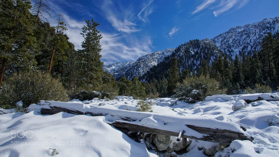 Photograph Hiking in Mill Creek Wash by Erik Anderson on 500px
