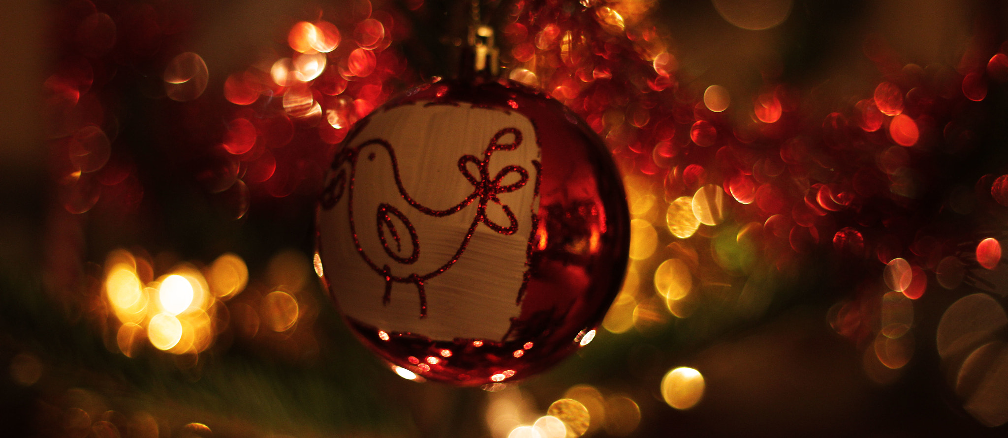 Photograph Christmas! by Matthew Edge on 500px