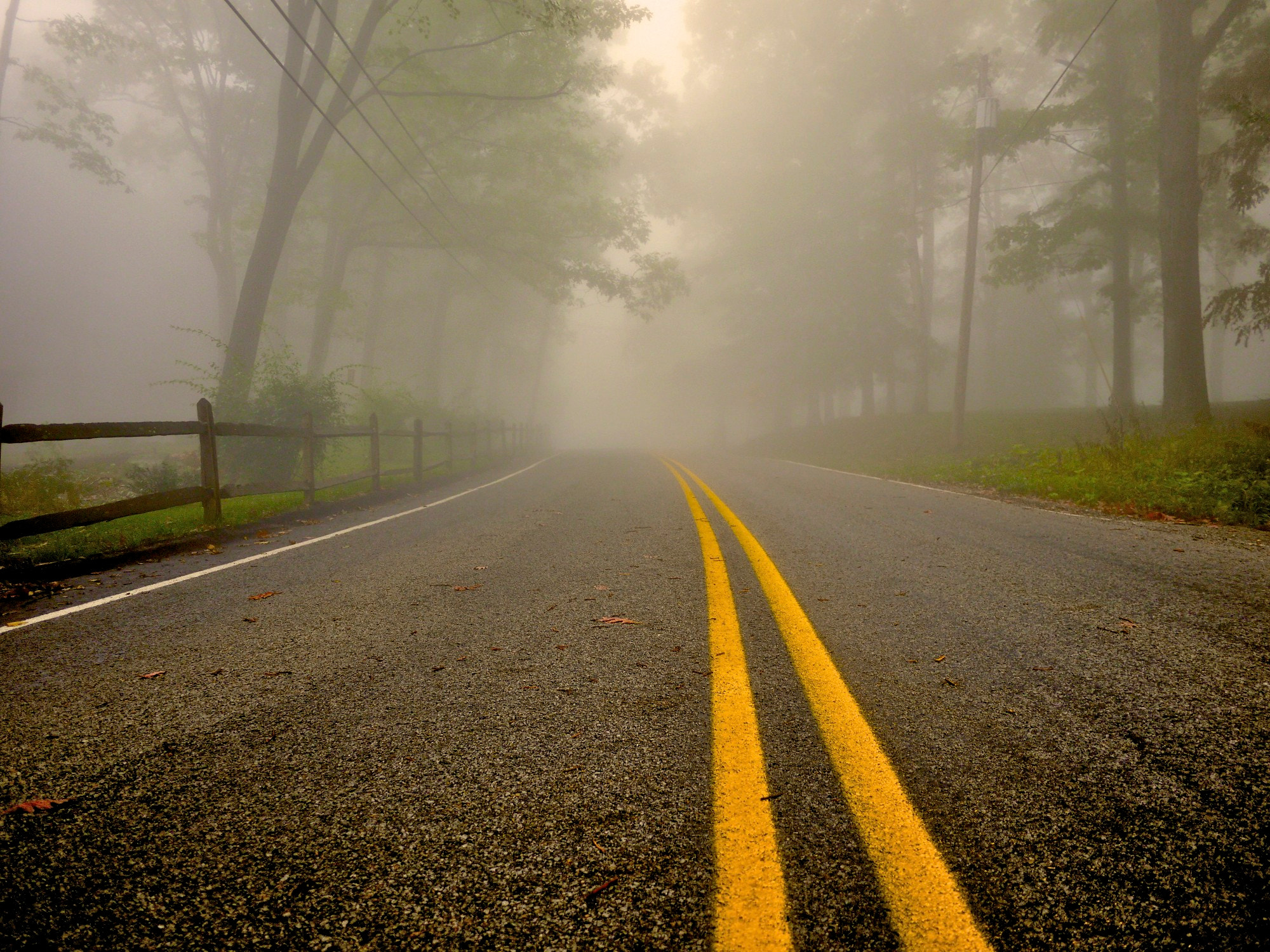 Photograph Foggy Road by Ron Lovelace on 500px