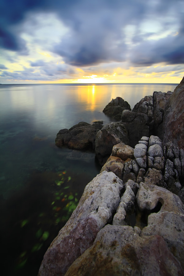 Photograph Morning Light by chan ationg on 500px