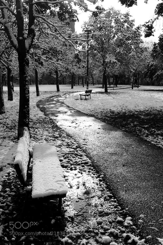 Photograph Prima neve 1 by Alessandro Salemi on 500px