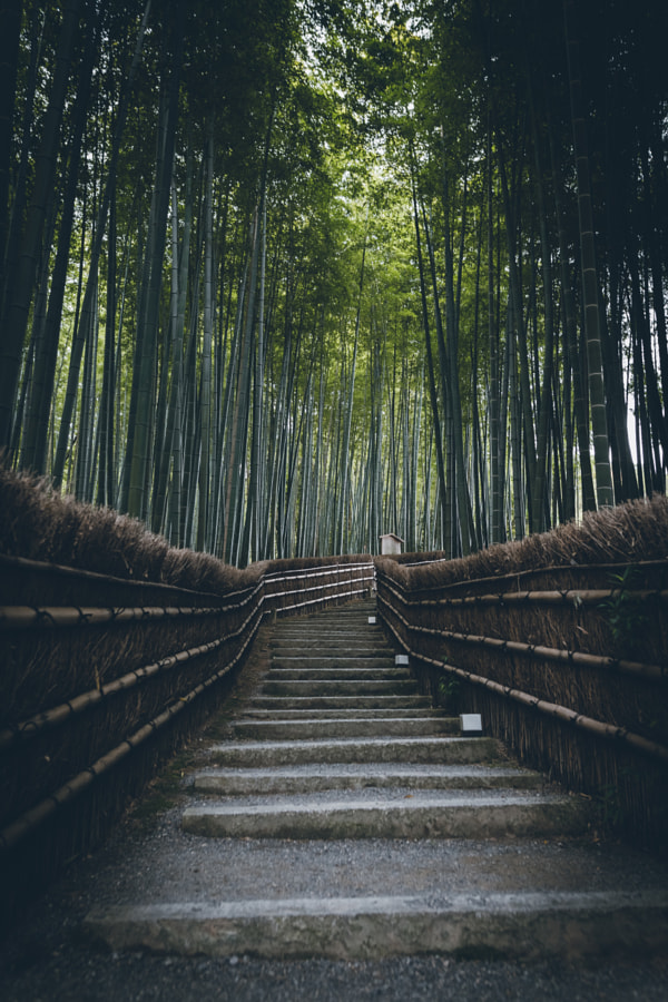 Landscape Photo Kyoto by Landscape Photographer Yuma Yamashita on 500px.com