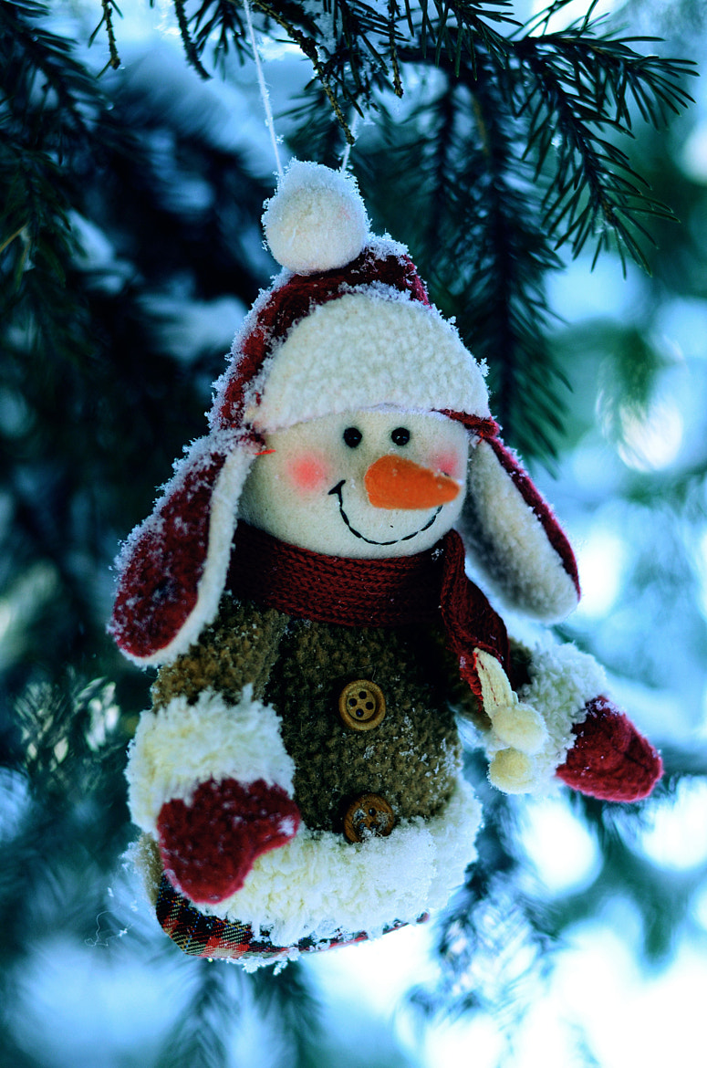 Photograph Cheerful snowman by Larisa  on 500px