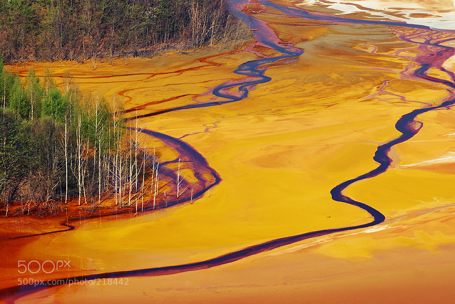 Photograph polluted lake by Radu Ponta on 500px