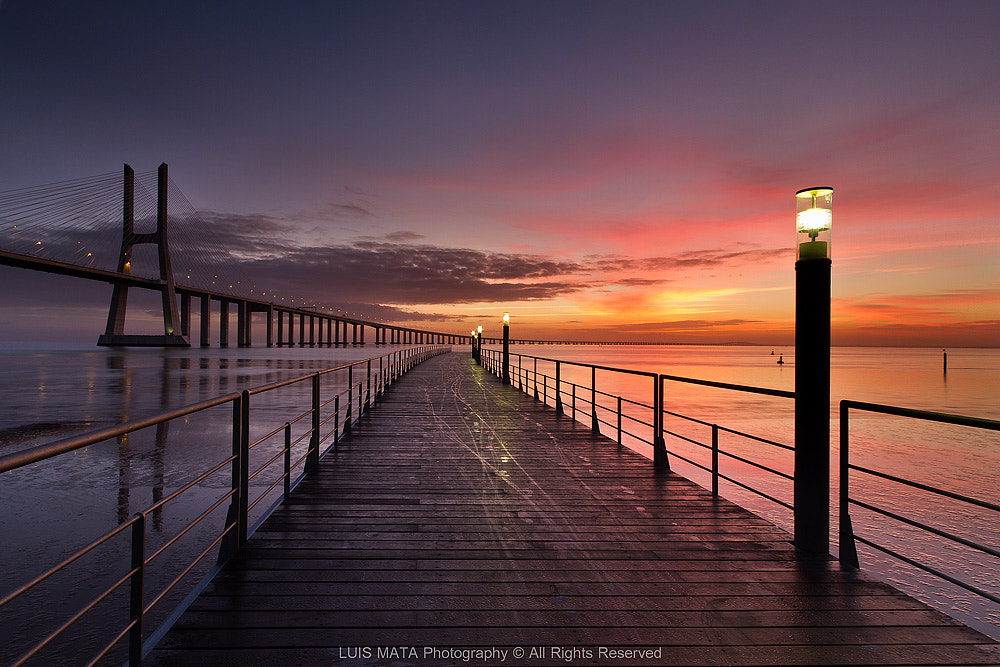 Photograph Sunrise at Vasco da Gama bridge by Luis Mata on 500px