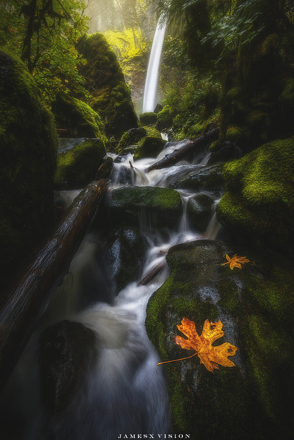 Cascading by James Xiang 1