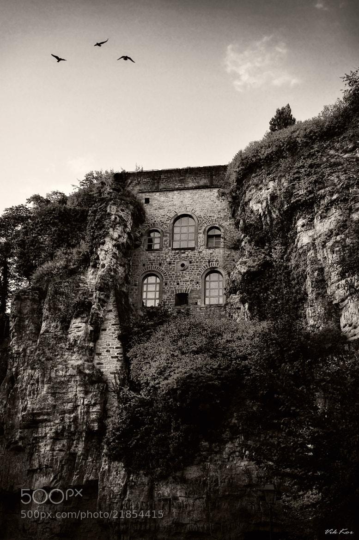 Photograph Luxembourg by Viktor Korostynski on 500px