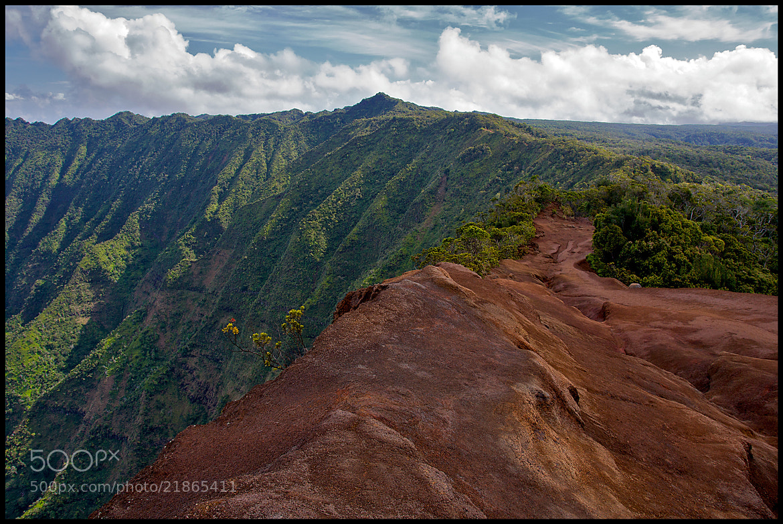 Photograph Pihea Trail, Kauai by vovamir on 500px