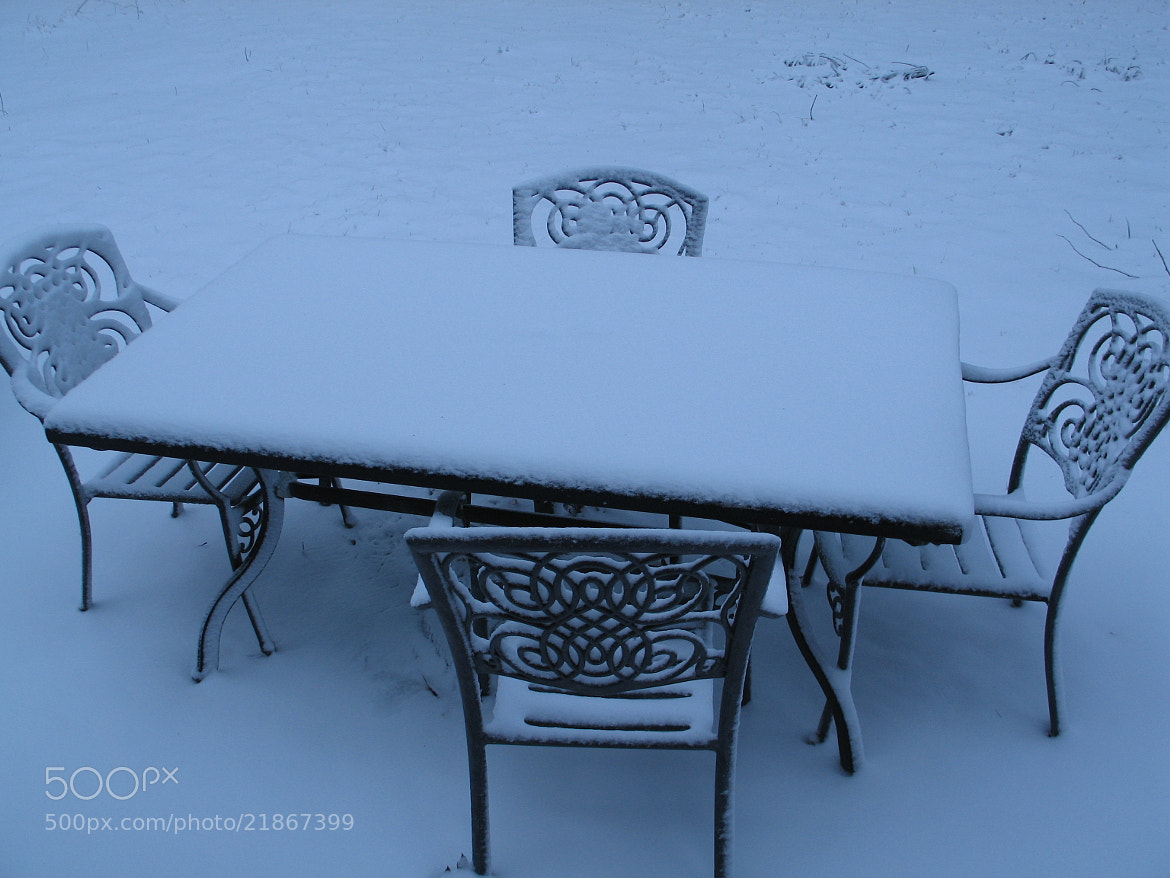 Photograph Winter's Table Setting by Nancy Henry on 500px