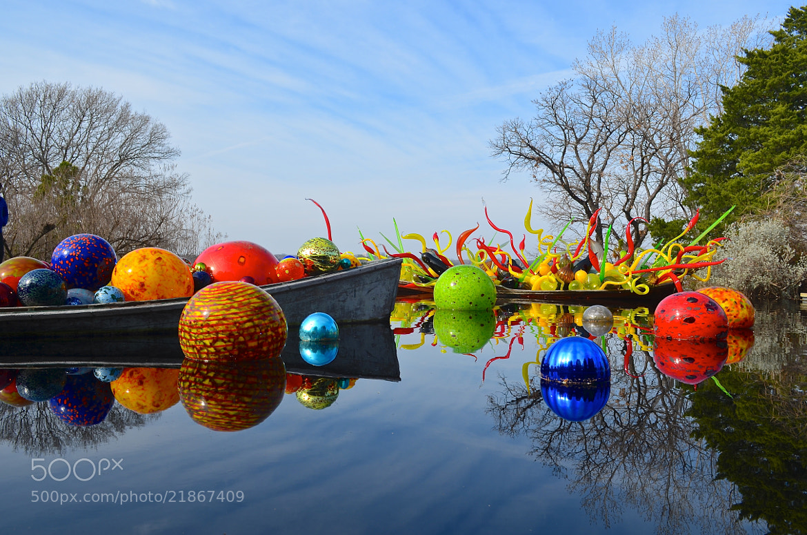 Photograph Chihuly Exhibit at Dallas Arboretum by Steven Bach on 500px