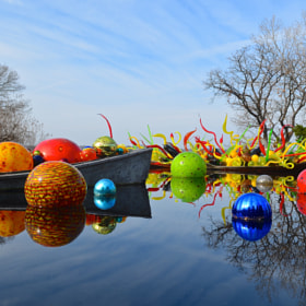 Chihuly Exhibit at Dallas Arboretum by Steven Bach (djangologian)) on 500px.com