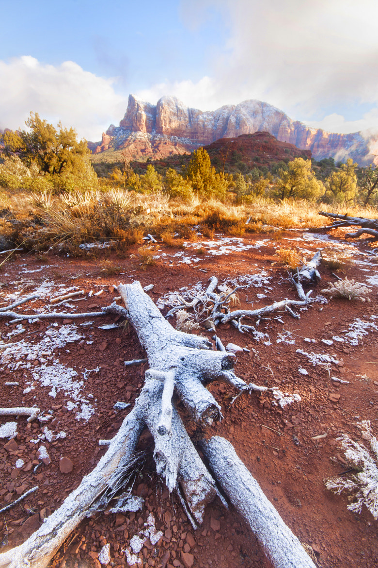 Photograph Snow day in Sedona!! by Samir Mohanty on 500px
