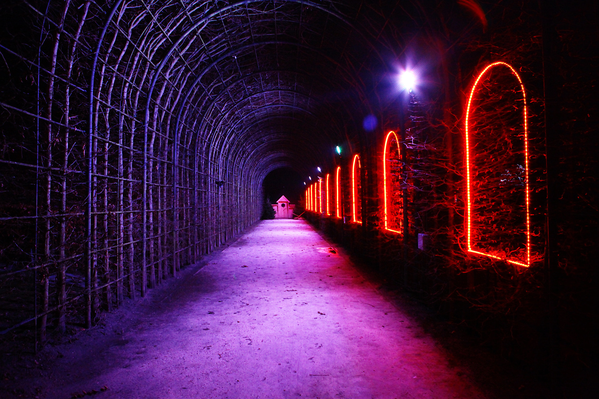 Photograph Tunnel by Martyn Lewis on 500px