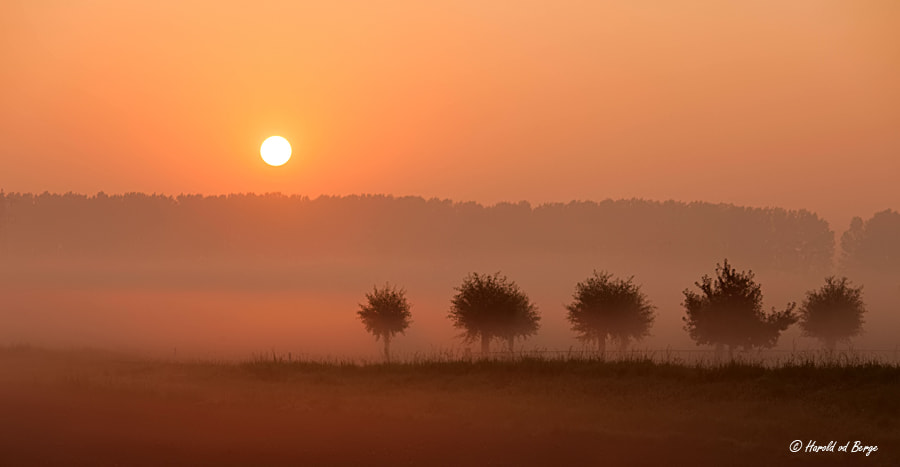 Photograph Morning Mood by Harold van den Berge on 500px