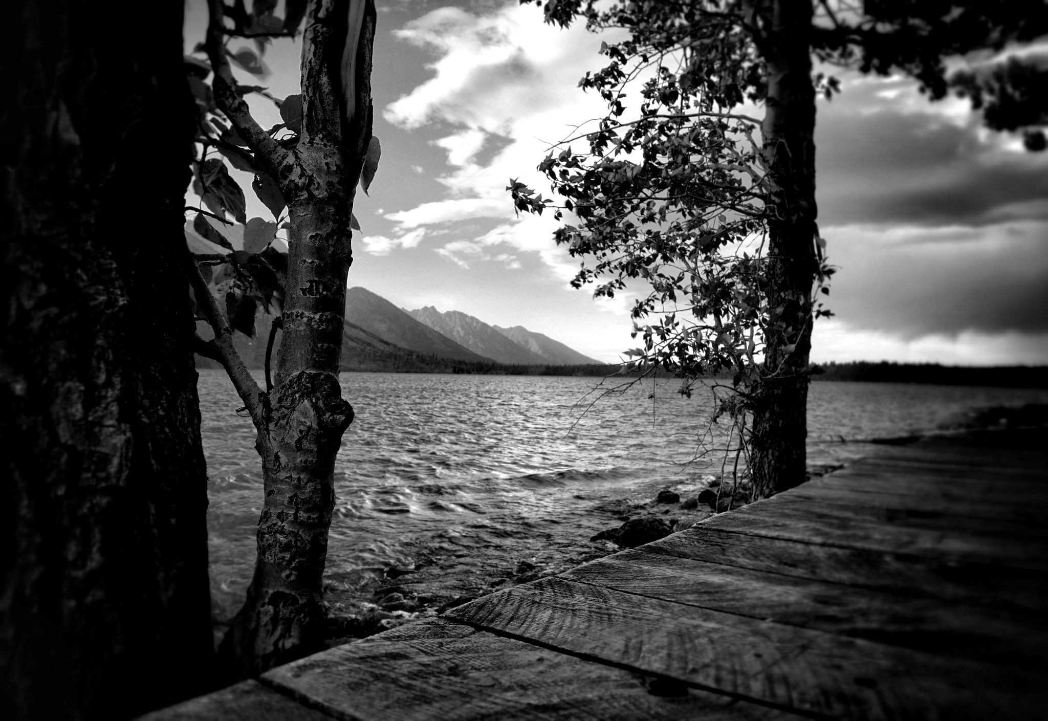 Photograph Jenny Lake from Boat House by Kindra Martinenko on 500px