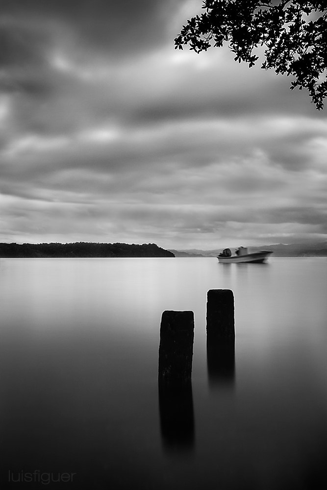 Photograph Stillness by Luis Figuer on 500px