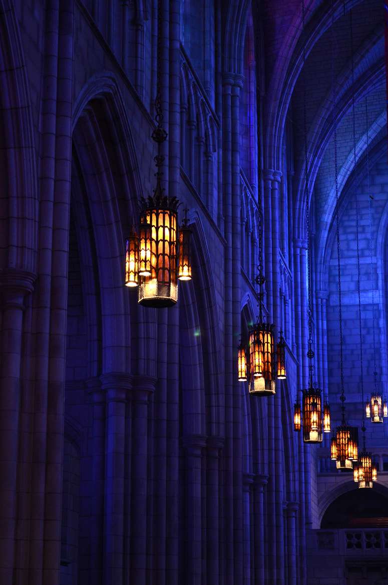 Photograph Gothic Cathedral  by Ioana Colfescu on 500px