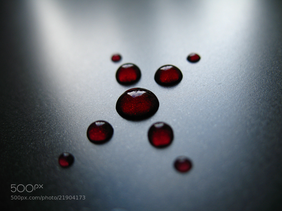 Photograph Red drops by Mariusz Milewski on 500px