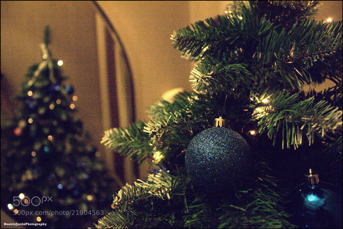 Photograph Christmas tree ^^ by Beatriz Jordá on 500px