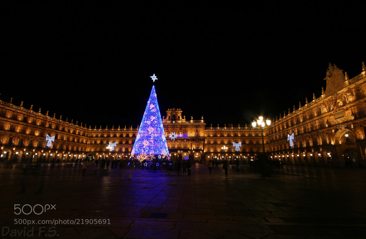 Photograph Plaza Mayor by David Fernandez on 500px