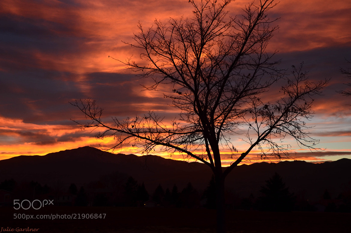 Photograph Front Range Sunset by Julie Gardner on 500px