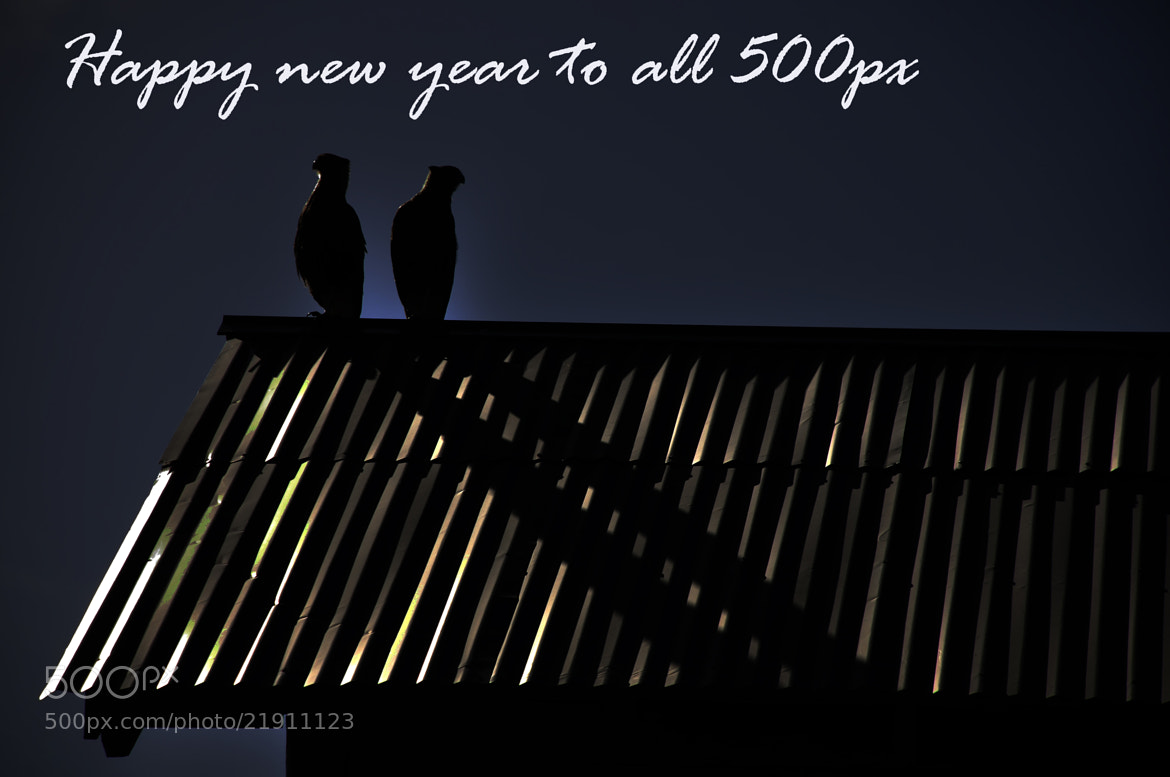 Photograph Which side will come the new year?(Happy new year) by Mario Boh on 500px