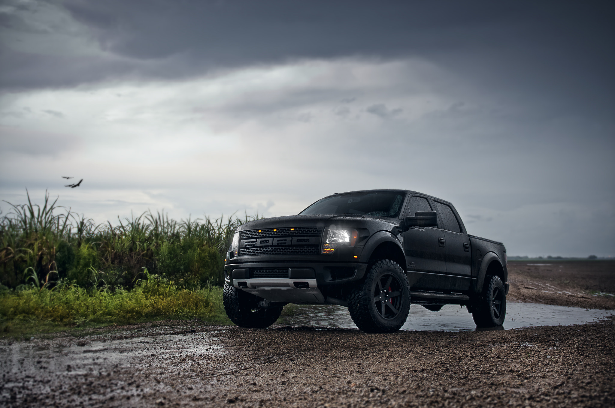 Photograph ADV.1 Ford Raptor 2 by William Stern on 500px