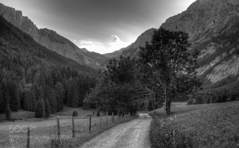 Photograph I'm walking... by Adrian Kraszewski on 500px
