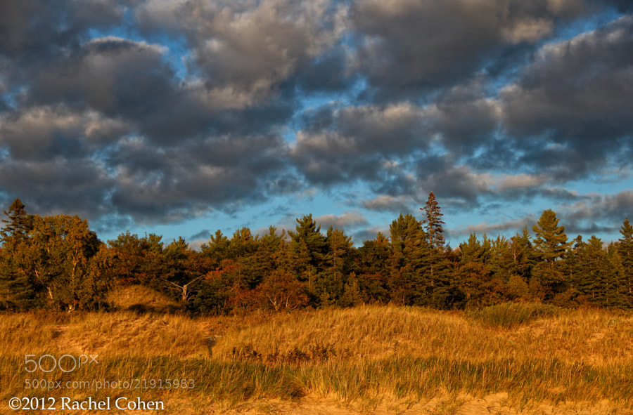 "Photograph ""Clouds Upon the Gold"" by Rachel Cohen on 500px"