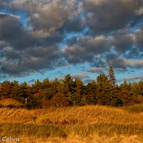 """Clouds Upon the Gold"" by Rachel Cohen (RCNaturephotos)) on 500px.com"