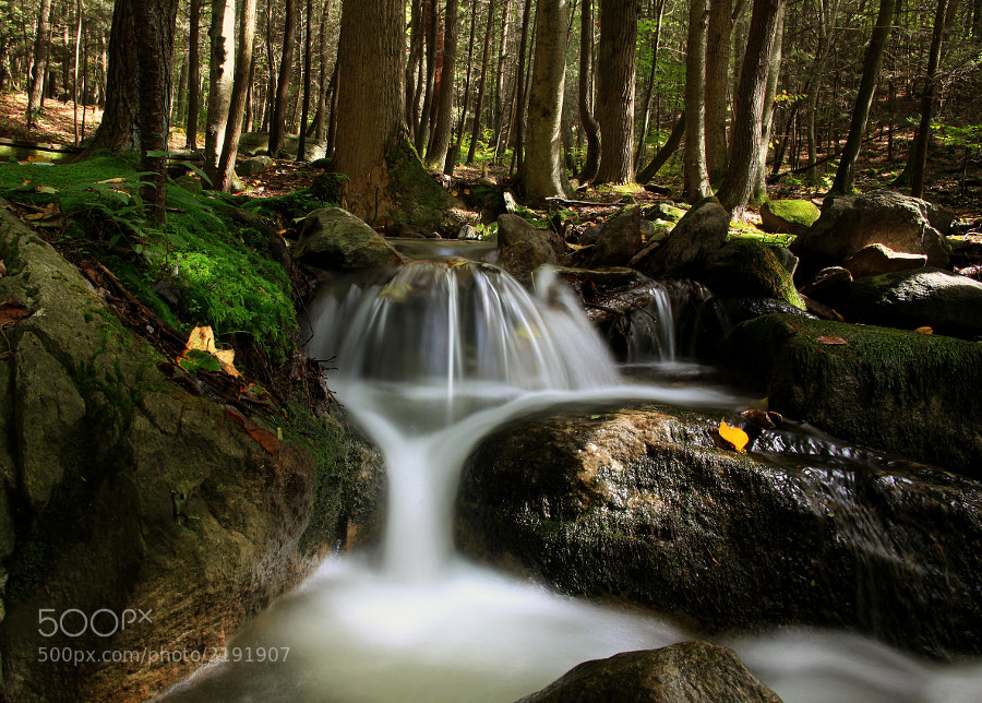 This small water fall was found along the Appalachian Trail in southern Pennsylvania, near the Maryland border.