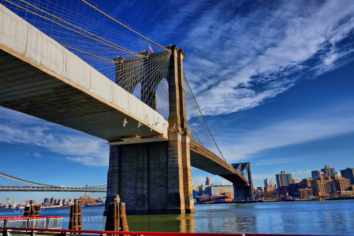 Photograph Bandage dress for Brooklyn Bridge by Danny Leung on 500px