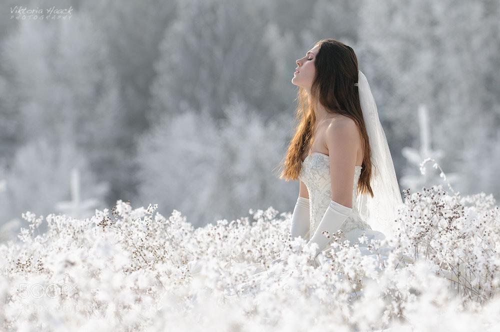 Photograph bliss by Viktoria Haack on 500px