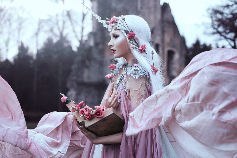 Blush of Rose by Bella Kotak on 500px