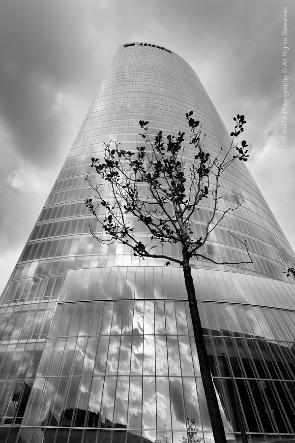Photograph Iberdrola Tower by Luis Mata on 500px