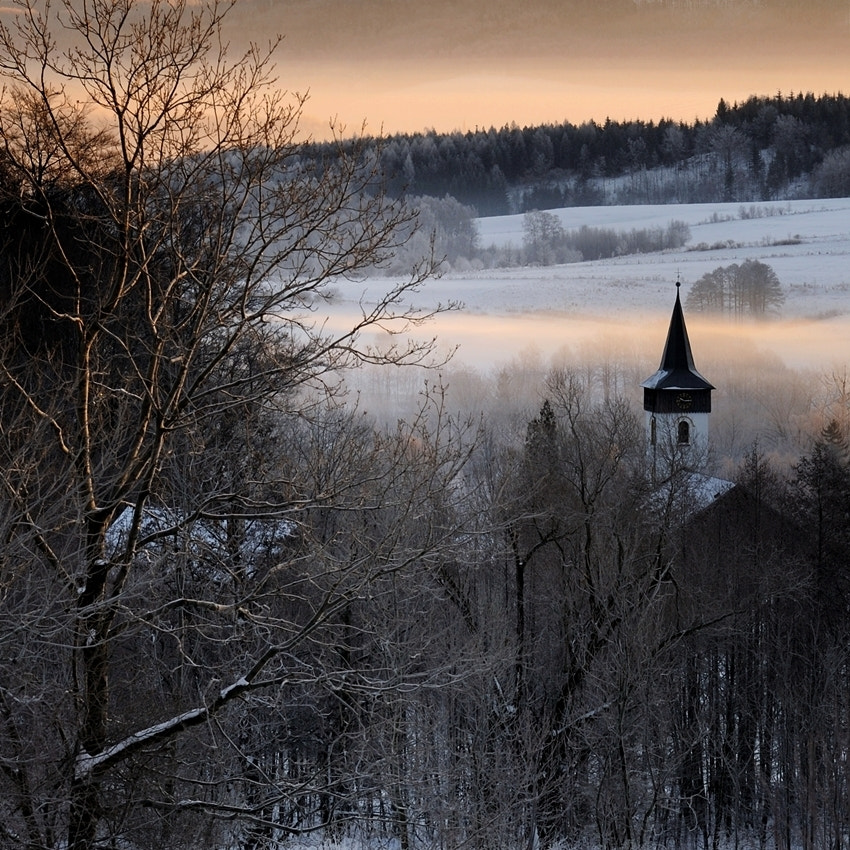 Photograph tower among the trees - Happy New Year!!! by Sebastian Luczywo on 500px