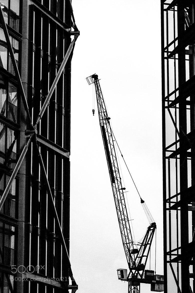 Photograph Cranes & lines & silhouettes by Kenan Malik on 500px