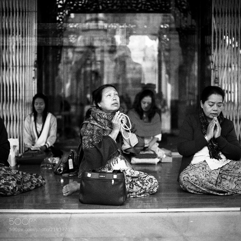 Photograph worship, shwedagon zedi daw by  momofuku on 500px