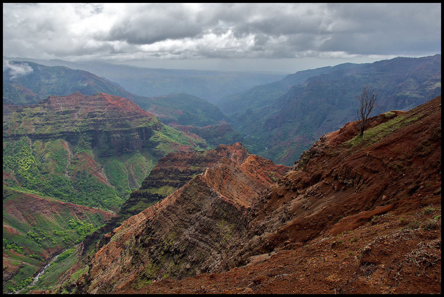 Photograph Canyon Trail, Kauai by vovamir on 500px