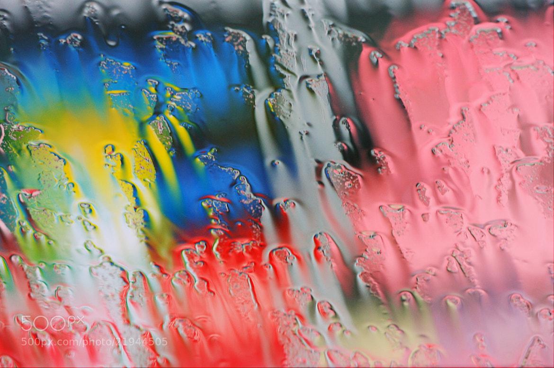 Photograph Rain by makoto isa on 500px