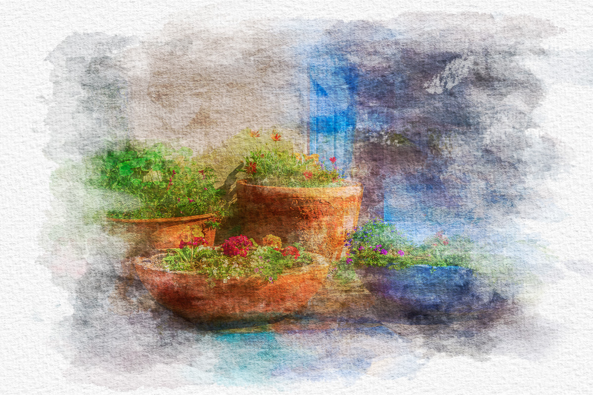 Photograph Flower Pots Watercolor by Paul Bartell on 500px