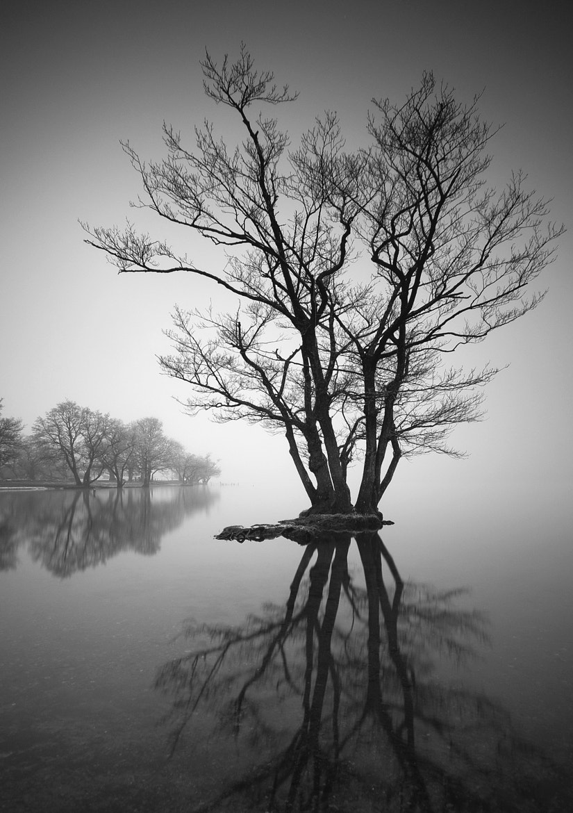 Photograph Island by Mark Littlejohn on 500px