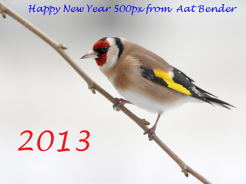 Photograph Happy New Year by Aat Bender on 500px