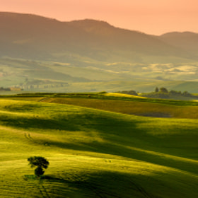 Shades of Green II by Laurent Decuyper (Addran)) on 500px.com